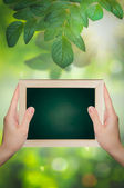 Hand holds a chalkboard natural spring bokeh background. — Photo