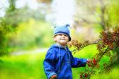 Kid in a funny hat near tree rowan. — Stock Photo