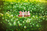 Happy New 2015 years on the green grass in summer park. — Stock Photo