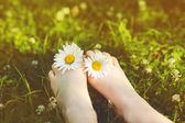 デイジーの花夏の公園の緑の芝生の上で子供の足。で — ストック写真