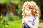 Beautiful little curly girl blowing dandelion, horizontal shot — Stock Photo