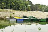 Boats at shore of small river bay. — Stock Photo