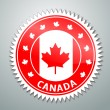 Stock Vector: Canadflag label