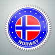 Norwegian flag label — Stock Vector