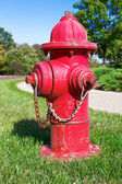 Red fire hydrant on green grass — Stock Photo