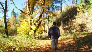 Man walks down forest path full of fallen leaves in Oregon forest in autumn. — Stock Video