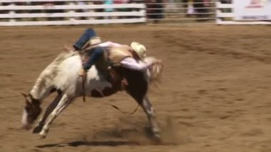 Cowboys on horses — Stock Video