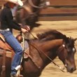 Stock Video: Cowboys on horses
