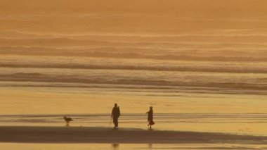 Man and woman walking during sunset at beach playing fetch with their dog. — Stock Video