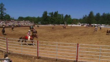 Cowboys on horses — Wideo stockowe