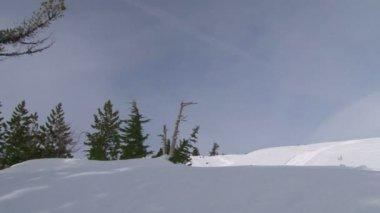 Snöiga backar vintertid — Stockvideo