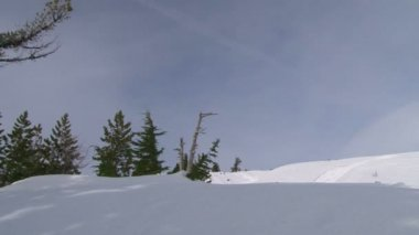 Snowy slopes in winter — Stockvideo