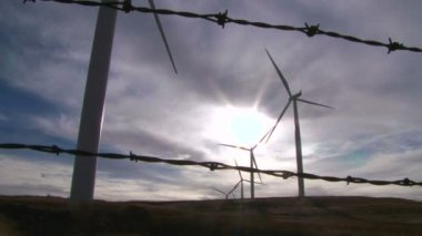 Windmills against a white sky — Stock Video