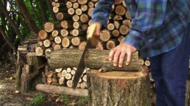Muž používá ruku viděl a řezání dřeva na hromady dřeva. — Stock video