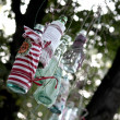 Stock Photo: Glass bottle hanging from tree