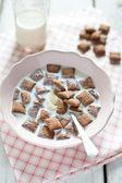 Krokante granen en chocolade kussens met melk — Stockfoto