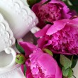 Peonies — Stock Photo #30938807