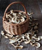 Dried mushrooms — Stock Photo
