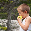 Stock Photo: Portrait of a little boy eating an apple outdoors.