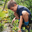 Stock Photo: Portrait of six year old boy playing outdoors in the mountains.
