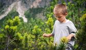 Portrét čtyřletého chlapce, procházky venku v horách — Stock fotografie
