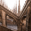 Detail of gothic cathedral of Milan. Italy — Stock Photo #14633101