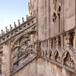 Detail of gothic cathedral of Milan. Italy — Stock Photo #14633115