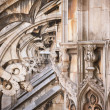 Detail of gothic cathedral of Milan. Italy — Stock Photo #14633125
