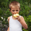 Portrait of a little boy eating an apple outdoors — Stock Photo