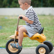 图库照片: Four year old kid playing outdoor on tricycle