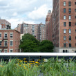 High Line public park, built on an historic freight rail line el — Stock Photo