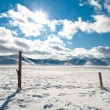 Winter landscape with snow and fence — Stock Photo