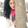 Portrait of beautiful girl in the snow hiding behind a tree — Stock Photo #14976689