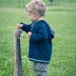 One year boy playing in the park portrait — Stock Photo