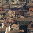 Panoramic view of the roofs of Bologna - Stock Photo