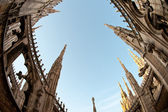 Gothic cathedral from below. Milan, Italy. Fish eye view — Stock Photo