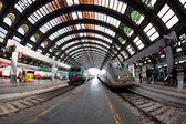 MILANO, ITALY - FEB 28: Central railway station on Feb 28, 2012 in Milano, Italy. In the station there are about 600 trains daily — Stock Photo