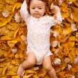 Stock Photo: 4 month baby lying on autumn leaves