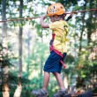 Stock Photo: 6 year old kid climbing trees in Dolomites, Italy