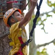 6 year old kid climbing trees in Dolomites, Italy — Stock Photo