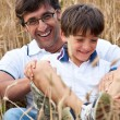 Father playing with his son in a wheat field — Foto Stock