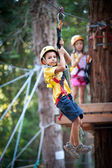 6 year old kids climbing trees in Dolomites, Italy — Stock Photo