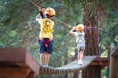 6 år gamla barn klättra i träd i dolomiterna, italien — Stockfoto