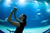 水槽の前で魚の写真を撮る女性 — ストック写真