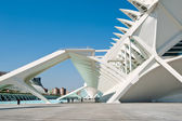VALENCIA, SPAIN - MARCH 31: Museo de las Ciencias Principe Felipe at The City of Arts and Sciences, the architectural complex designed by Santiago Calatrava on March 31, 2012 in Valencia, Spain — Stock Photo