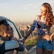 portrait of young beautiful woman hitchhiker standing at side with handsome driver — Stock Photo