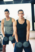 Two young men exercising with dumbbells in the gym — Stock Photo