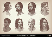 "Engraving vintage Mankind set from ""The Complete encyclopedia of illustrations"" — Stockvektor"