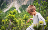 Portrait of four year old boy walking outdoors in the mountains — Стоковое фото