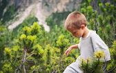 Porträtt av fyra-årig pojke promenader utomhus i bergen — Stockfoto